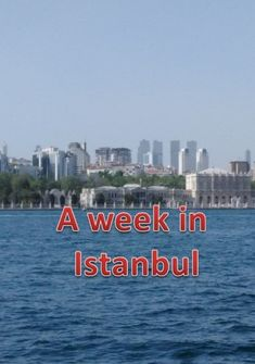 Istanbul is a great city, vibrant, interesting and so many things to see and do, as a tourist. The locals are friendly and helpful, prices very reasonable. Our week whizzed by. Road Closure, Blue Mosque, Blown Away, Early Retirement, Guide Book, Money Saving Tips, The Locals, Istanbul, Rome