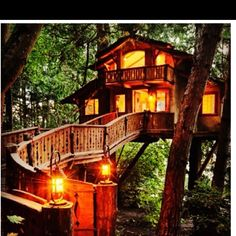 1000 Images About Tree Houses On Pinterest Tree Houses