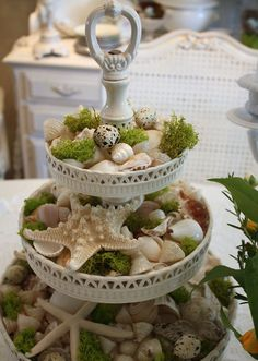 This seashells and moss centerpiece puts your coastal casual style on full display