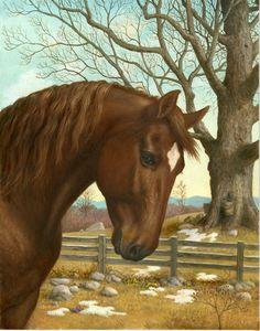 Norobe: Patrón punto de cruz: caballo