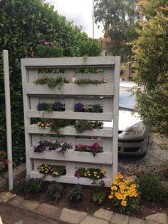 Wir haben aus 2 Paletten und 2 Holzstäben einen einfachen und sehr effektiven Sichtschutz gemacht. Mit ein wenig Teichfolie lassen sich die Zwischenräume prima bepflanzen.