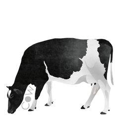 C is for Cow #animalart