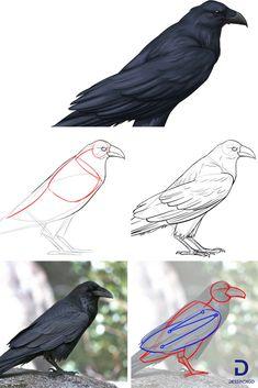 53 meilleures images du tableau Corbeau Tatouage ...  53 meilleures i...
