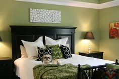 Nice master bedroom love the green and black. The cute doggie an added plus.   :)