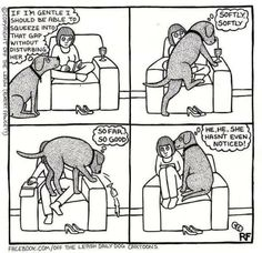 This is my dog to a tee.