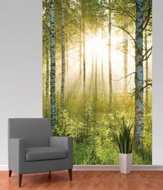 Forest Deco Wallpaper Mural Fototapeten