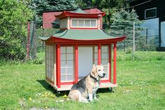 Hundehütte Japanhaus