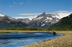 Katmai National Park and Preserve is a United States National Park and Preserve in southern Alaska, notable for the Valley of Ten Thousand Smokes and for its brown bears.