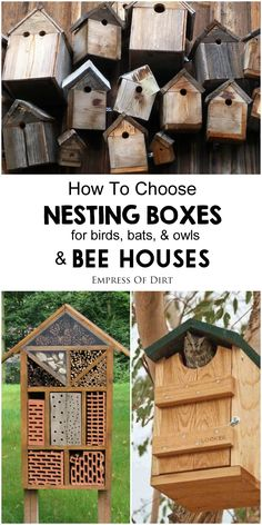 Bird nesting boxes and bee houses can help wildlife and benefit your garden if…