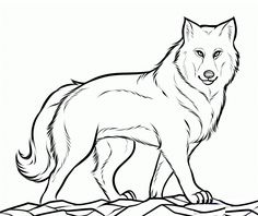 Cool Wolf Coloring Pages Printable. On this page, you will discover the wolf coloring pictures. The wolf is a spectacular and mysterious animal! Puppy Coloring Pages, Free Coloring Sheets, Coloring Pages To Print, Coloring Book Pages, Coloring For Kids, Printable Coloring Pages, Wolf Outline, Wolf Colors, Animal Templates