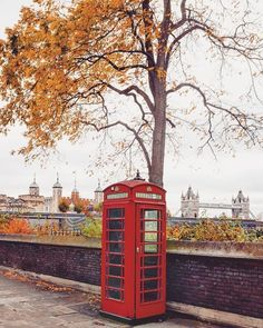 London Eye, London City, Kensington Palace Gardens, Hampstead Heath, Richmond Park, Holland Park, London Places, London Photos, Stunning View