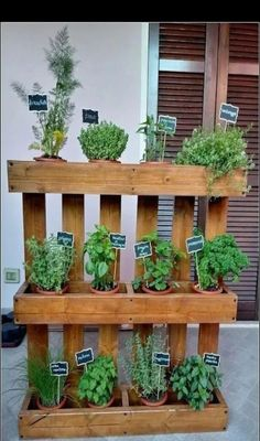 24 Awesome Vertical Garden Design Ideas And Remodel. If you are looking for Vertical Garden Design Ideas And Remodel, You come to the right place. Here are the Vertical Garden Design Ideas And Remode. Herb Garden Pallet, Herb Garden Design, Diy Herb Garden, Indoor Garden, Outdoor Gardens, Garden Planters, Vertical Herb Gardens, Vertical Pallet Garden, Palet Garden
