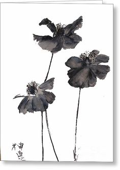 Ink Painting - Sumi E Poppies by Sibby S Japanese Painting, Chinese Painting, Chinese Art, Japanese Art, Chinese Brush, Abstract Watercolor, Watercolor Flowers, Watercolor Paintings, Poppies Painting