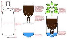 Ótima sugestão. Vasos para plantas que precisam de muita umidade feitos através da reciclagem de garrafas pet.