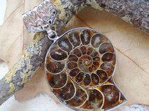 Ammonit Fossil, Anhänger, Silber plattiert