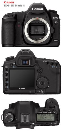 The Canon 5D Mark 2