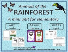 Introduce 10 of the rainforest animals to your students with this resource.  Easy reader book, full color animal posters, and more!
