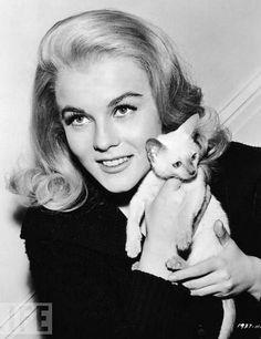 Grandes artistas y sus gatos.Ann-Margaret nacida en Valsjöbyn, Jämtland, Suecia,
