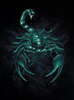 Scorpio and Capricorn Compatibility - lifeinvedas Scorpio And Capricorn Compatibility, Scorpio Love, Zodiac Signs Scorpio, Zodiac Signs Capricorn, Love Horoscope, Astrology Scorpio, Capricorn Personality Traits, Scorpio Traits, Scorpion Serie