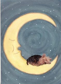 Yorkshire terrier (yorkie) sleeping on moon / Lynch folk art print