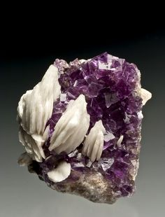 Fluorite with Barite - Berbes, Asturias, Spain Minerals And Gemstones, Rocks And Minerals, Stones And Crystals, Gem Stones, Crystal Magic, Beautiful Rocks, Mineral Stone, Rocks And Gems, Natural Stones