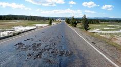 """The Roads In Yellowstone Are Melting .. A 3.3-mile stretch of road had to be closed because of geological shifts that are causing massive amounts of heat to come to the surface. The result is sunken, hot asphalt on roads and hiking trails that, according to AP, poses the """"danger of stepping through a solid-looking crust of soil into boiling-hot water""""."""