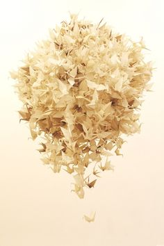 One Thousand Paper Cranes by Angelica Sollander, via Behance