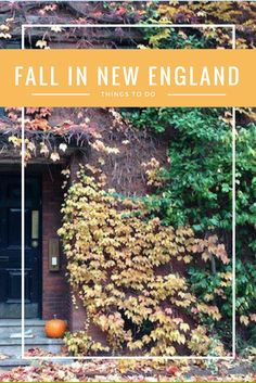Fall in New England is on of our favorite things - apple picking (and cider donuts), fall foliage, and weekend getaways - there's so much to love.