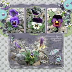 Late Summer Colors by Janet. Kit: Daisy a Day by Meryl Bartho http://scrapbird.com/designers-c-73/k-m-c-73_516/meryl-bartho-c-73_516_522/a-daisy-a-day-page-kit-p-17703.html