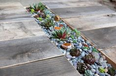 DIY Succulent Table by Matti Salomaki