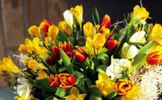 wiosna, kwiat, elegancki, żonkile, tulipany, kwiaty, zakupy, kolorowe