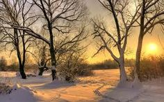 winter landscapes - Google претрага