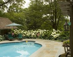 pool/landscaping