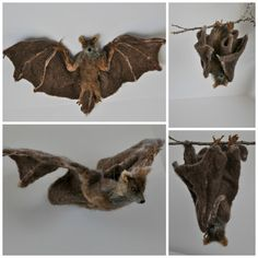 This needle-felted bat is an ideal item for needle-felted animals' collectors and for those who want adding some coziness to their home. Needle Felted Animals, Felt Animals, Halloween Bats, Halloween Decorations, Wet Felting, Needle Felting, Halloween Creatures, Nature Table, Felt Birds