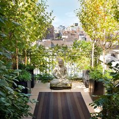 Rooftop garden Manhattan designed installed & maintained by Plant Specialists #plantspecialists #plants #plant #design #designnyc #rooftop #rooftopgarden #garden #gardener #gardens #gardeners #manhattan #newyork #landscape #landscapedesign #yoga by plantsnyc