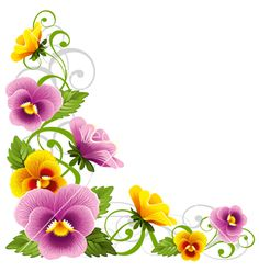 Pansy vector 775230 - by Pazhyna on VectorStock�