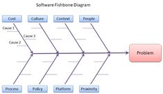The fishbone diagram