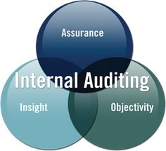 Tokyo Consulting Group has developed a reputation as one of the leading providers of internal audit services.