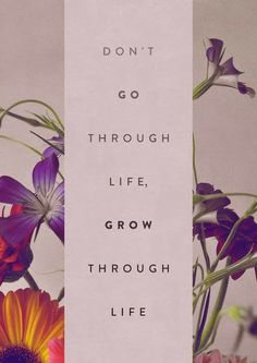 Don't go through life, grow through lile | Inspirational Quotes