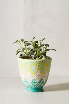 Etched pot from @Anthropologie