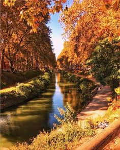 Canal du Midi Le Canal Du Midi, Beautiful Landscapes, How To Memorize Things, Nature, France, River, Rooftops, Outdoor, Instagram