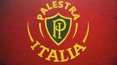 SE #PALMEIRAS♥