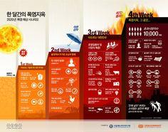 2020년 폭염 예상 시나리오 <한 달간의 폭염지옥>에 관한 인포그래픽