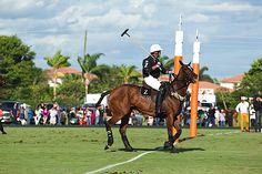 Action at International Polo Club