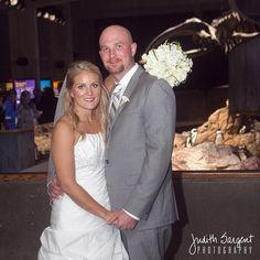 This gorgeous couple were married at the @newenglandaquarium a couple of years ago. Not many people can say that their wedding guests included a colony of penguins!