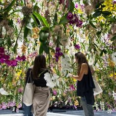 The teamLab - FLOATING FLOWER GARDEN SPACE / Have you ever opened the doors to a garden with thousands of levitating and perfumed flowers? This exceptional and highly poetic sensory experience will be presented to you by teamLab at the entrance of hall 7.