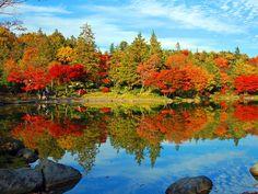 Gepind van kepguru Fall Photos, Autumn, Mountains, Nature, Travel, Painting, Reflection, Van, Pictures