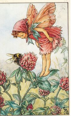 Postcrossing CN-860819 - Card featuring The Red Clover Fairy, from Flower Fairies of the Wayside, 1948.  Sent by Postcrosser in China.
