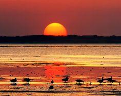Tapety na plochu - auto-moto, celebrity, film, HDTV, . Maputo, Beautiful Beach Sunset, Sunset Beach, Sunset Pictures, Cool Pictures, Nature Pictures, Beautiful Pictures, Sunset Photography, Landscape Photography