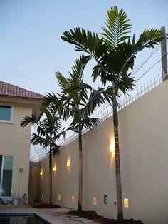 Stone Wall Design, Pond Design, Fence Design, Garden Design, Tropical Landscaping, Outdoor Landscaping, Front Yard Landscaping, Palm Trees Landscaping, Front Garden Landscape